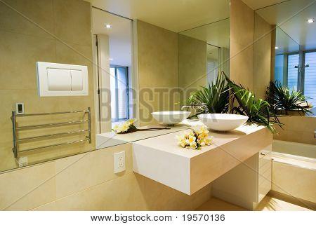 A modern, designer bathroom interior