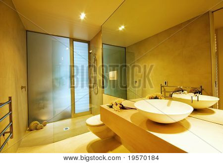 A modern, designer bathroom interior