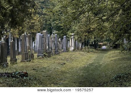 Almost Untended Cemetery Section