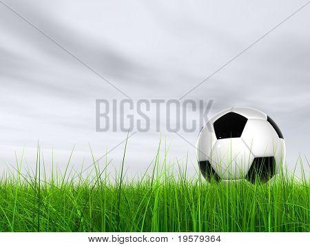3D bola de futebol preto e branco de couro na grama verde sobre um fundo de céu cinza natural com branco