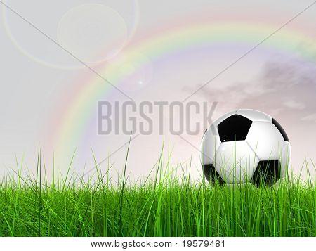 3D bola de futebol preto e branco de couro na grama verde sobre um fundo de céu azul natural com nuvem