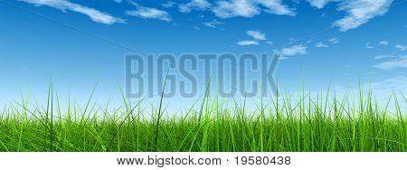 verde 3d de alta resolución hierba sobre una bandera de cielo azul con nubes blancas como fondo y una clara ho