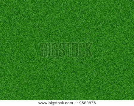 High resolution 3D green grass texture, ideal as background for sport,football,soccer,golf,web or nature designs