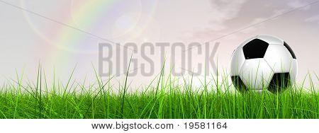 3D bola de futebol preto e branco de couro na grama verde sobre uma sagacidade de fundo do banner de céu azul natural
