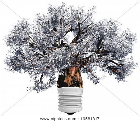grey baobab tree isolated on white background as a lamp ,ideal for nature, season or conceptual designs. It is a conceptual image for sustainable, ecological and energy designs.
