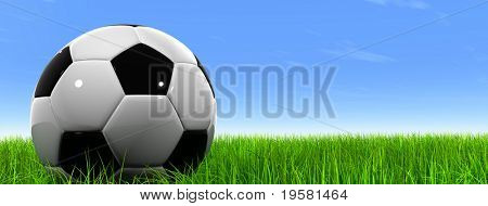 3d leather black and white soccer ball on green grass over a natural clear blue sky banner background, ideal for sport and leisure designs
