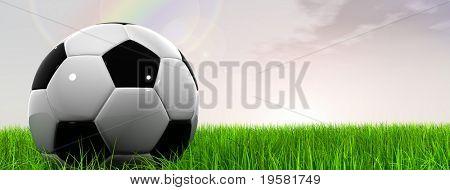 3D bola de futebol preto e branco de couro na grama verde sobre um fundo de banner de céu azul natural com