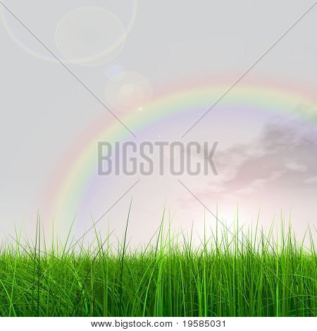 high resolution 3d green grass over a blue sky with white clouds as background and a nice rainbow