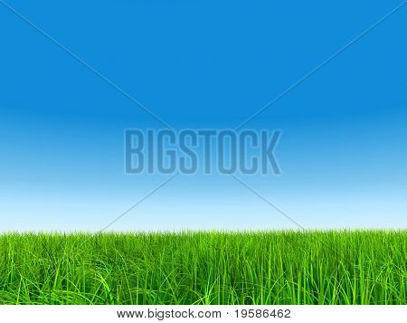 High resolution 3d green grass over a clear blue sky as background and a clear horizon