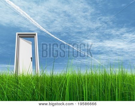 High resolution 3D white door opened in grass to a nice sky background with white clouds and a plane trail