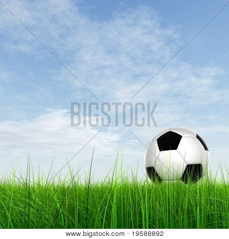 High resolution 3d leather black and white soccer ball on green grass over a natural clear blue sky background
