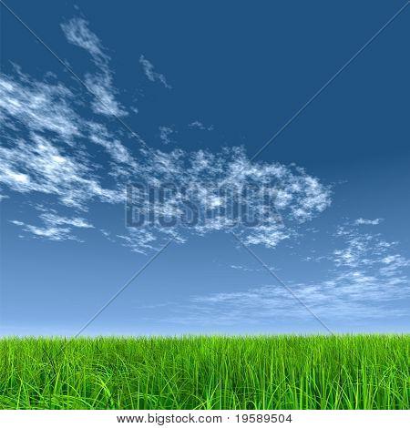 High resolution green grass over a blue sky background