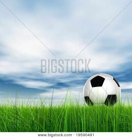 High resolution 3D soccer ball in green grass over a blue sky