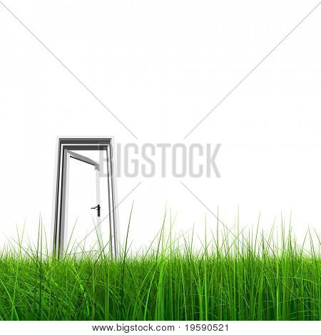 High resolution 3D opened door in grass isolated on white background