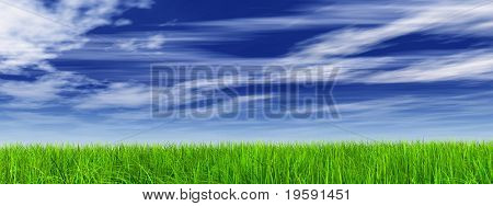 High resolution green grass over a blue sky background banner