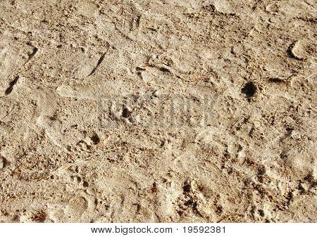 Sandy beach sand with human footprints