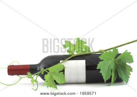 Wine Bottle And Vine Leaves