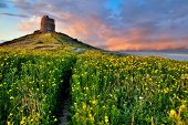 stock photo of yellow castle  - spring flower field with trail to castle tower bright vivid colors bright yellow pasture colorful spring meadow fairy tale landscape yellow flowers with path leading to old ancient castle - JPG