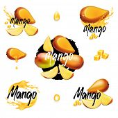 Mango collection. A set of design elements for packing juice. Whole fruits, slices, mango cubes, spl poster