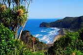 View of a west coast beach in New Zealand
