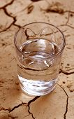 stock photo of water shortage  - half glass of water on cracked earth image highlighting danger of drooght - JPG