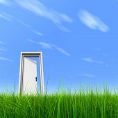 stock photo of front door  - High resolution 3D white door opened in grass to a nice sky background with white clouds - JPG