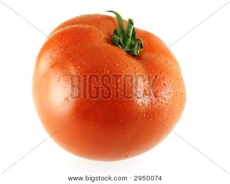 Fresh Ripe Single Tomato With Drops Of Water