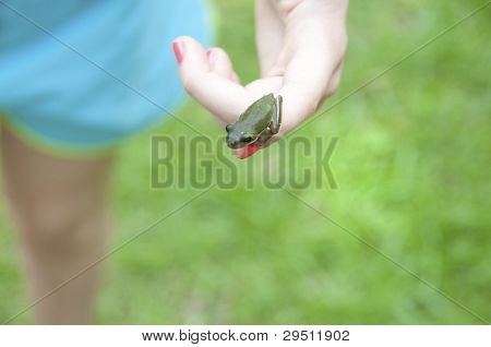 Tomboy showing off tiny tree frog