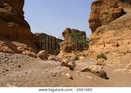 Valle del desierto