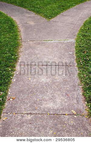 Fork In The Pathway With Grass