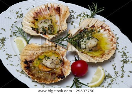Scallop shells baked in oven isolated on black