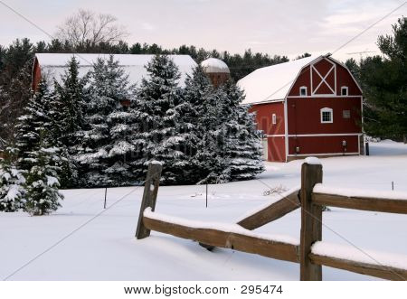 Winter On The Farm