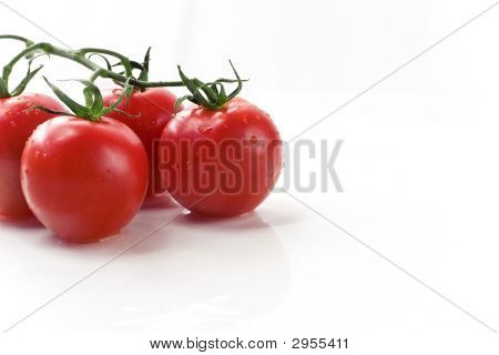 Red Vine Tomatoes
