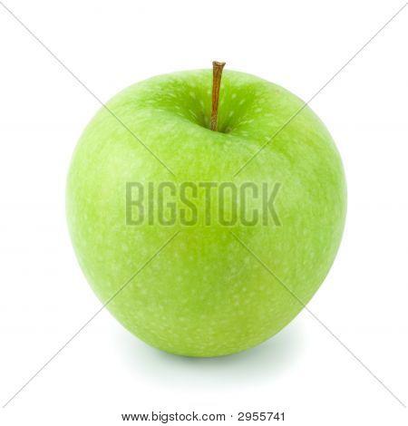 Granny Smith Apple (W/Path)