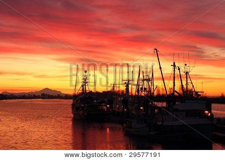 Fishboats at Dock, Steveston Sunrise