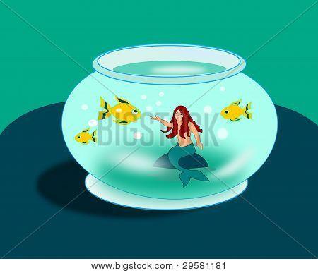 Mermaid in the Goldfish Bowl
