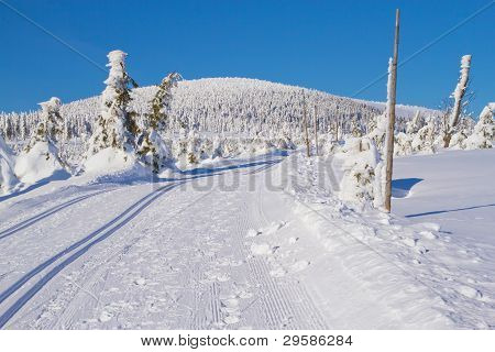 Winter Mountain Landscape Scenery With Cross Country Skiing Way