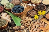 Adaptogen food with herbs, spices, fruit,flowers and supplement powders. Used in herbal medicine to  poster