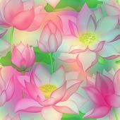 Lotus Buds And Flowers Seamless Vector Pattern. Water Lilly Nelumbo Aquatic Plant Floral Graphic Des poster