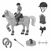 Vector Illustration Of Race  And Horse  Icon. Set Of Race  And Racing  Stock Symbol For Web. poster