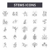 Stems Line Icons, Signs Set, Vector. Stems Outline Concept, Illustration: Technology, Science, Stem, poster