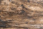 Closeup. Aged Solid Old Wood Slat Rustic Shabby Brown Background. Grunge Faded Wood Board Panel Stru poster