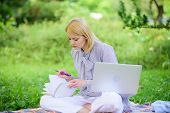 Woman With Laptop Sit On Rug Grass Meadow. Online Or Freelance Career Ideas Concept. Guide Starting  poster