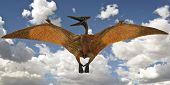 foto of pteranodon  - A Pteranodon Pterosaur Glides in a Blue Sky with Clouds - JPG
