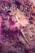 Graceful Youth. Top View Of Beautiful Young Woman In Pink Ballet Tutu Surrounded By Flowers. Spring  poster