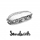 Long Chiabatta Sandwich With Ham Slices, Cheese, Tomatoes And Lettuce Leaves. Hand Drawn Sketch Styl poster