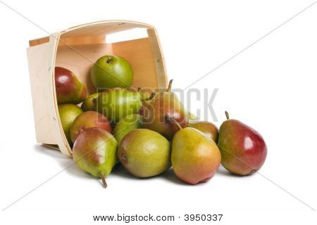 Seckel Pears From Basket