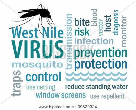 West Nile Virus Word Cloud