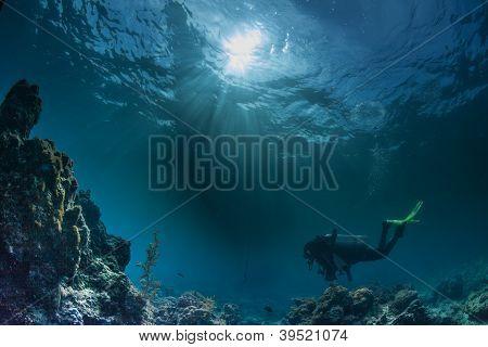 underwater sea scape