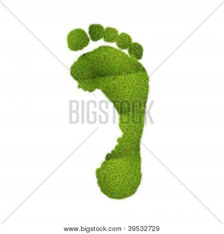 ökologischen Fußabdruck.